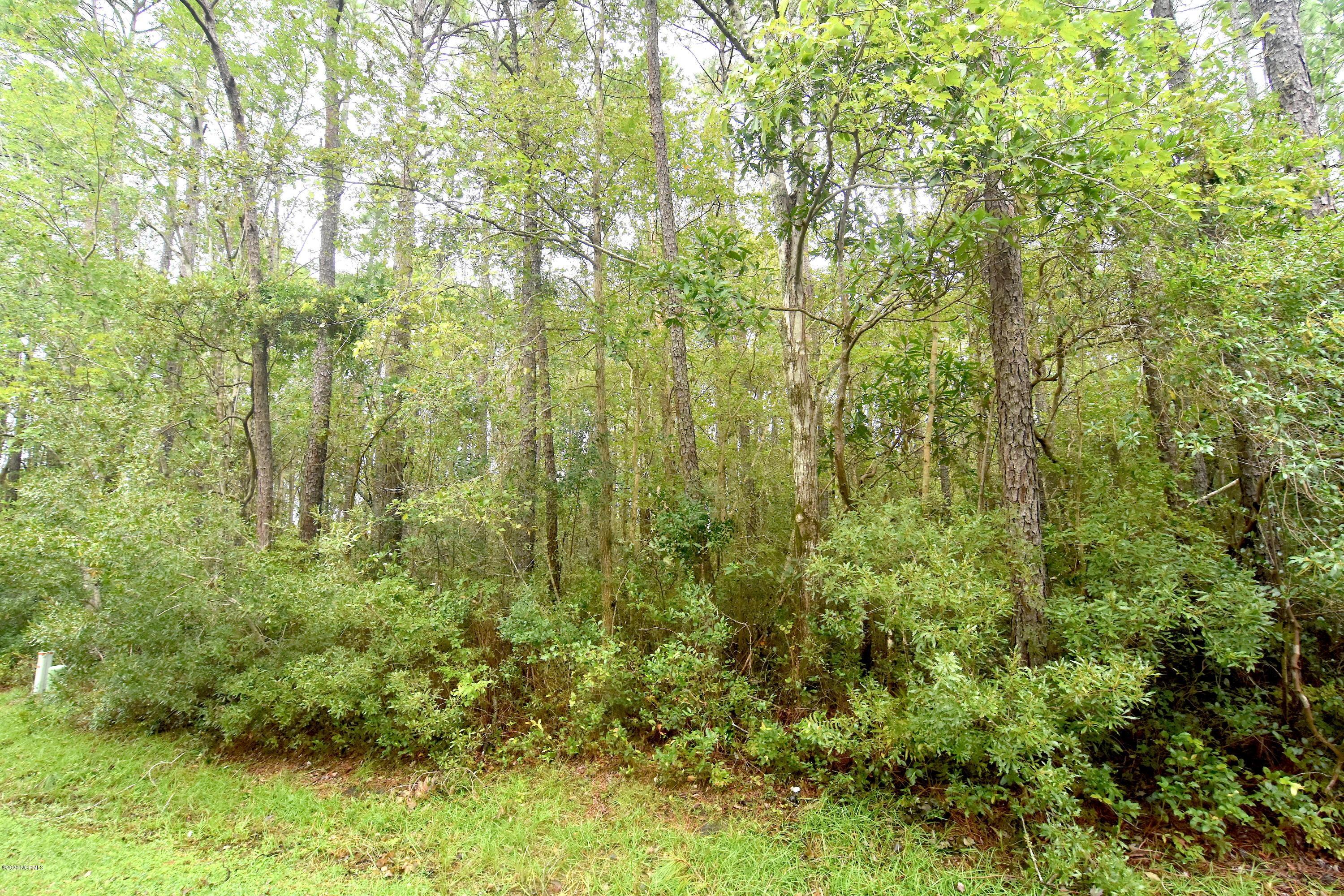 902 River Reach Court, New Bern, North Carolina 28560, ,Residential land,For sale,River Reach,100220534