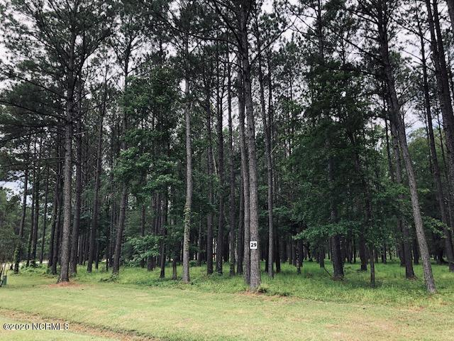 66 Madison Avenue, Oriental, North Carolina 28571, ,Residential land,For sale,Madison,100221135