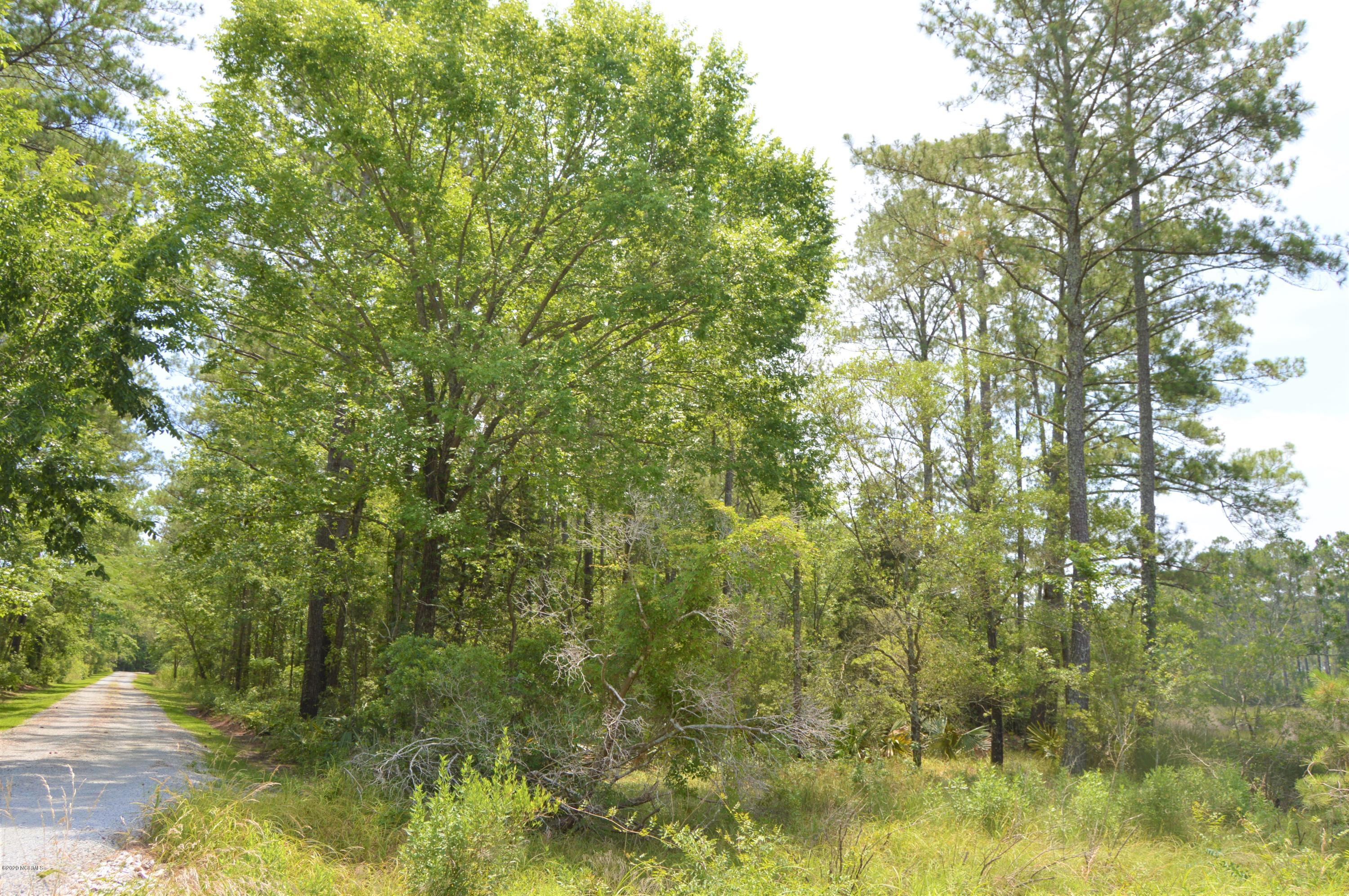 Lot D Whortonsville Road, Merritt, North Carolina 28556, ,Residential land,For sale,Whortonsville,100223289