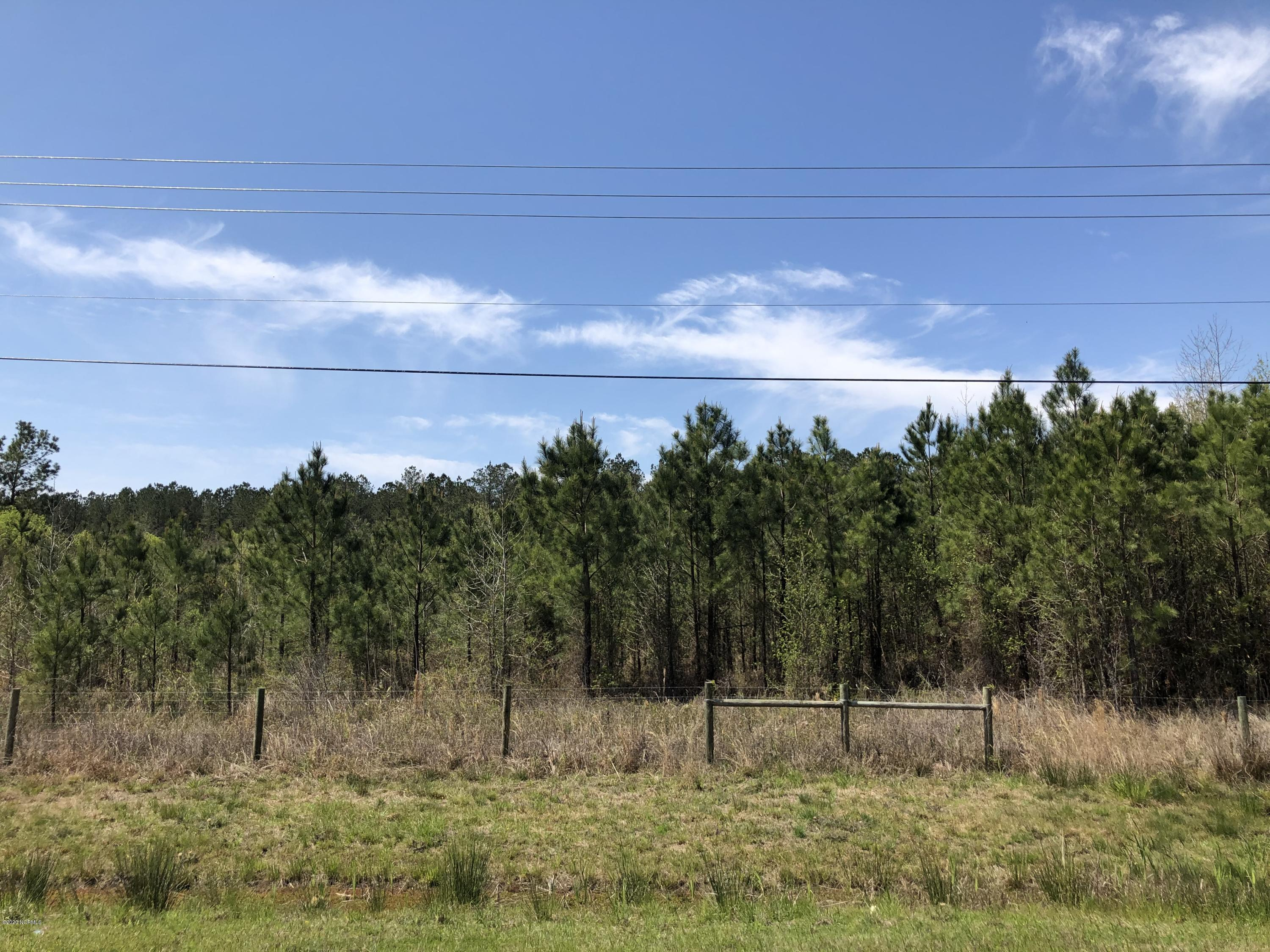 11508 Hwy 17, Maysville, North Carolina 28555, ,Residential land,For sale,Hwy 17,100220712