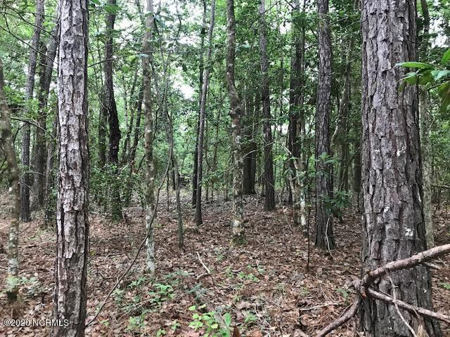 490 Argonne Road, Southport, North Carolina 28461, ,Residential land,For sale,Argonne,100221773