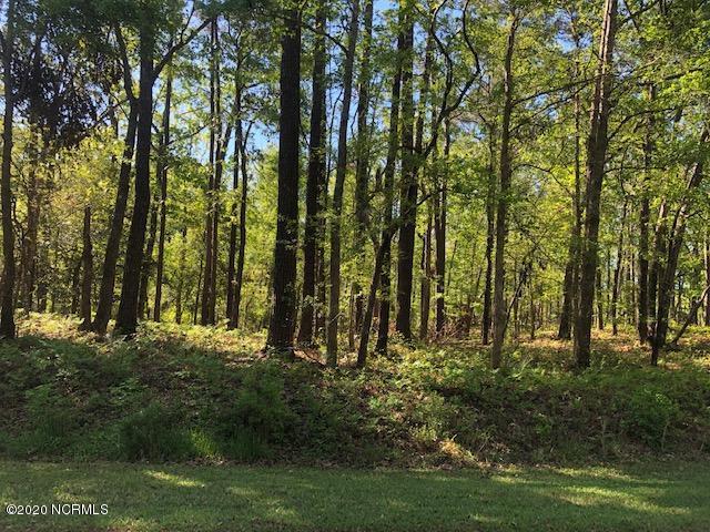 00 Elizabeth Road, Arapahoe, North Carolina 28510, ,Residential land,For sale,Elizabeth,100223471
