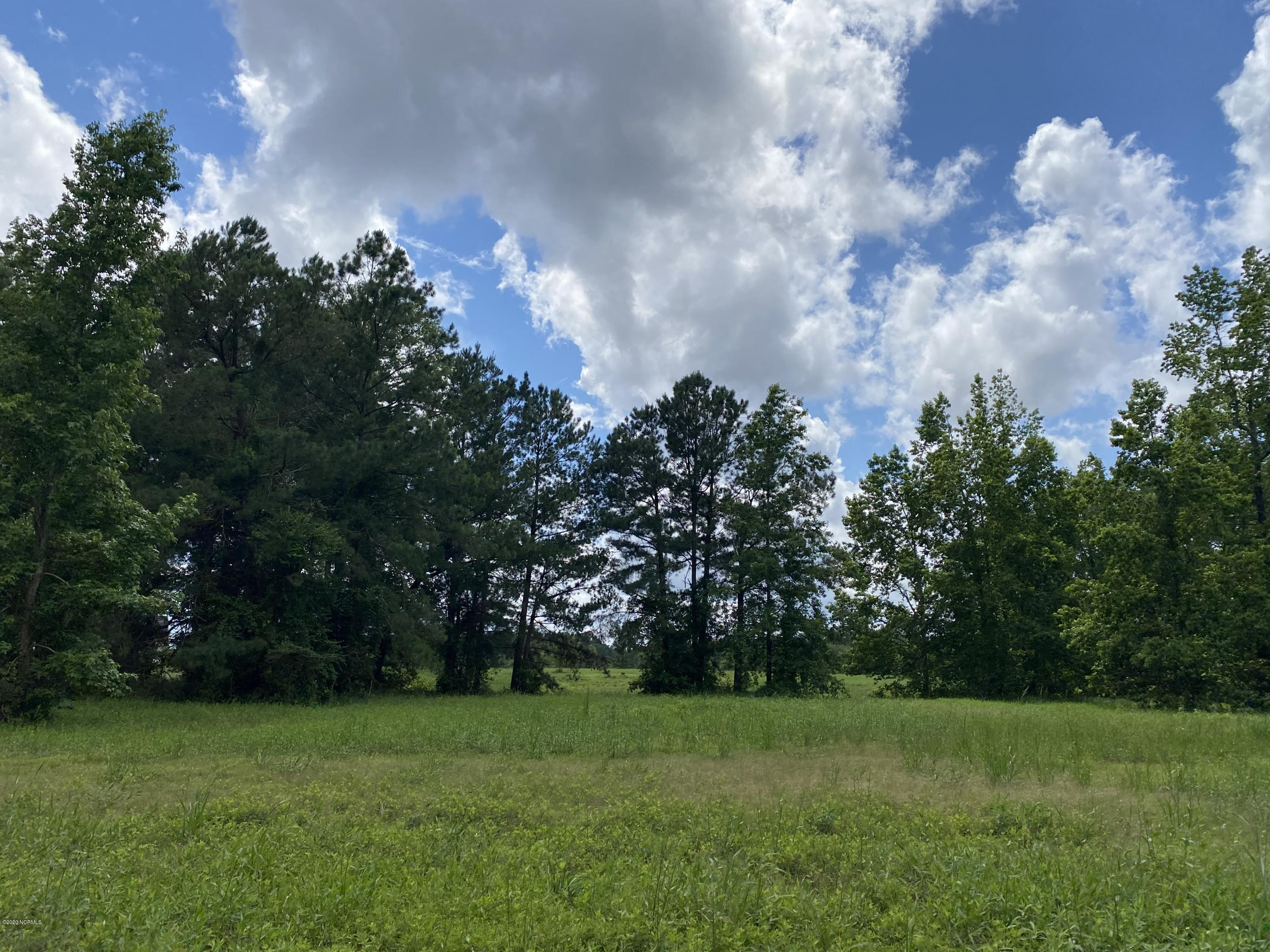 162 Winding Way, Wallace, North Carolina 28466, ,Residential land,For sale,Winding,100223220
