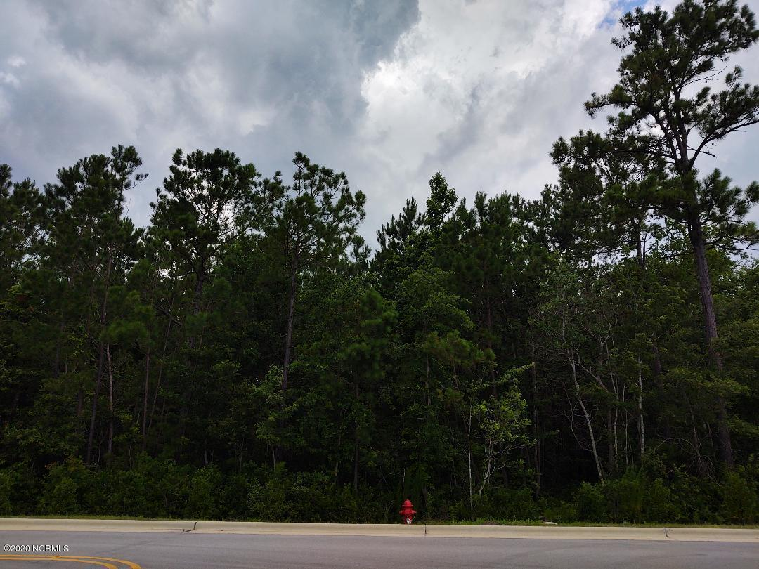 320-A Perkins Road, Hampstead, North Carolina 28443, ,Undeveloped,For sale,Perkins,100223353