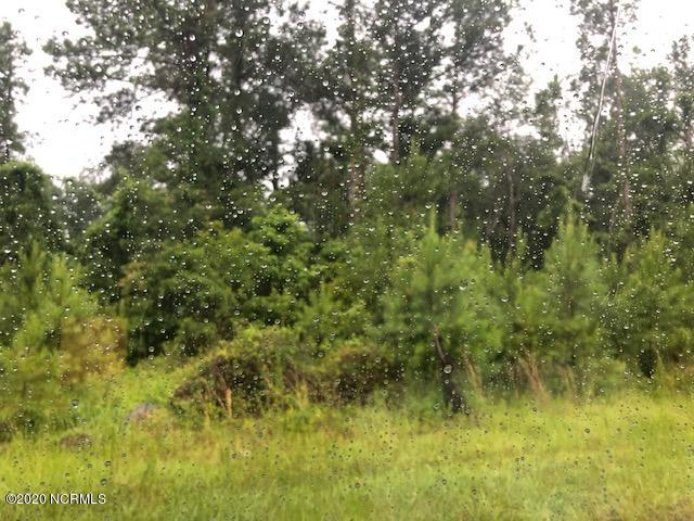 0 Browns Trail, Hampstead, North Carolina 28443, ,Residential land,For sale,Browns,100223833