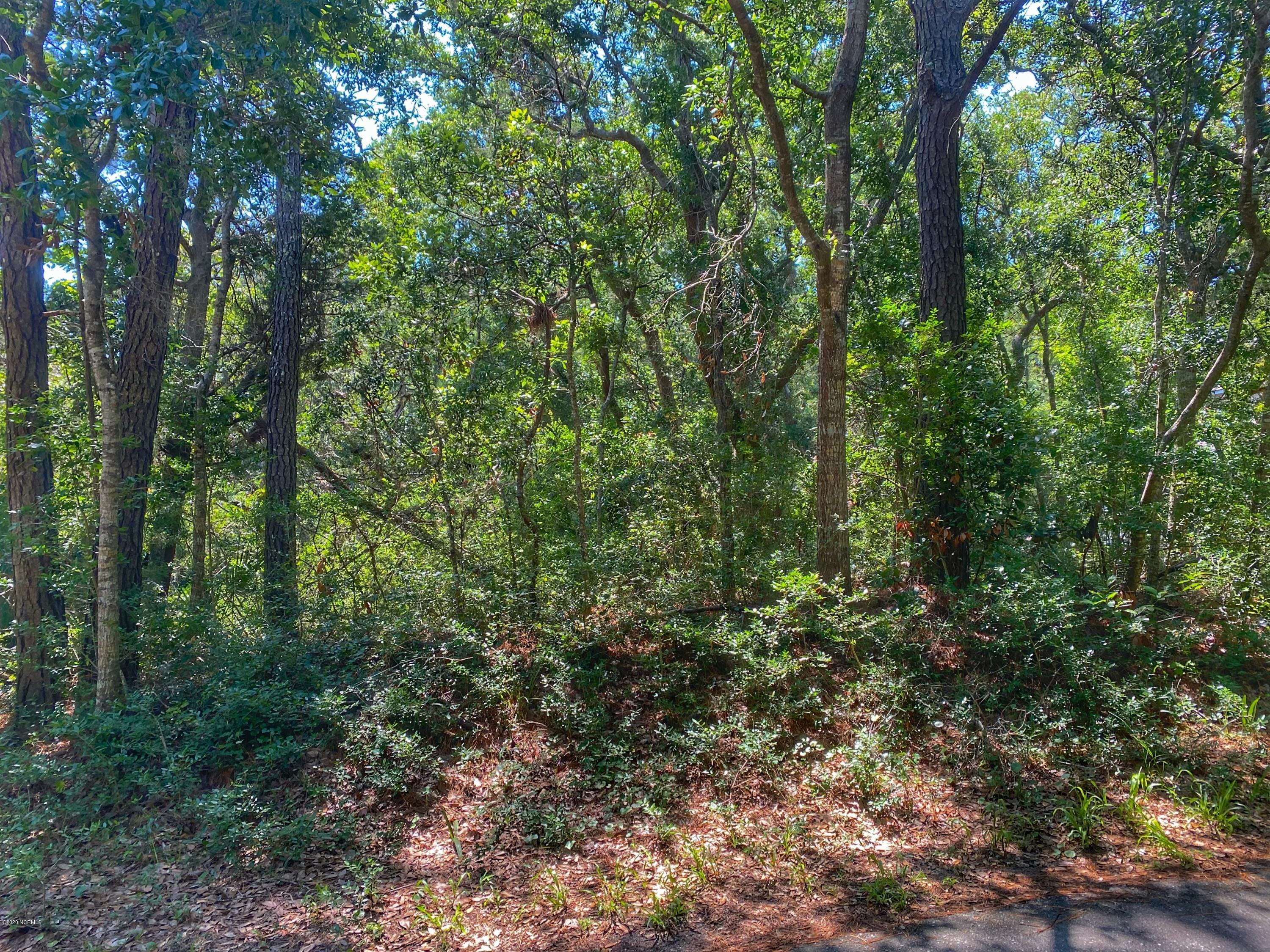 31 Fort Holmes Trail, Bald Head Island, North Carolina 28461, ,Residential land,For sale,Fort Holmes,100224091