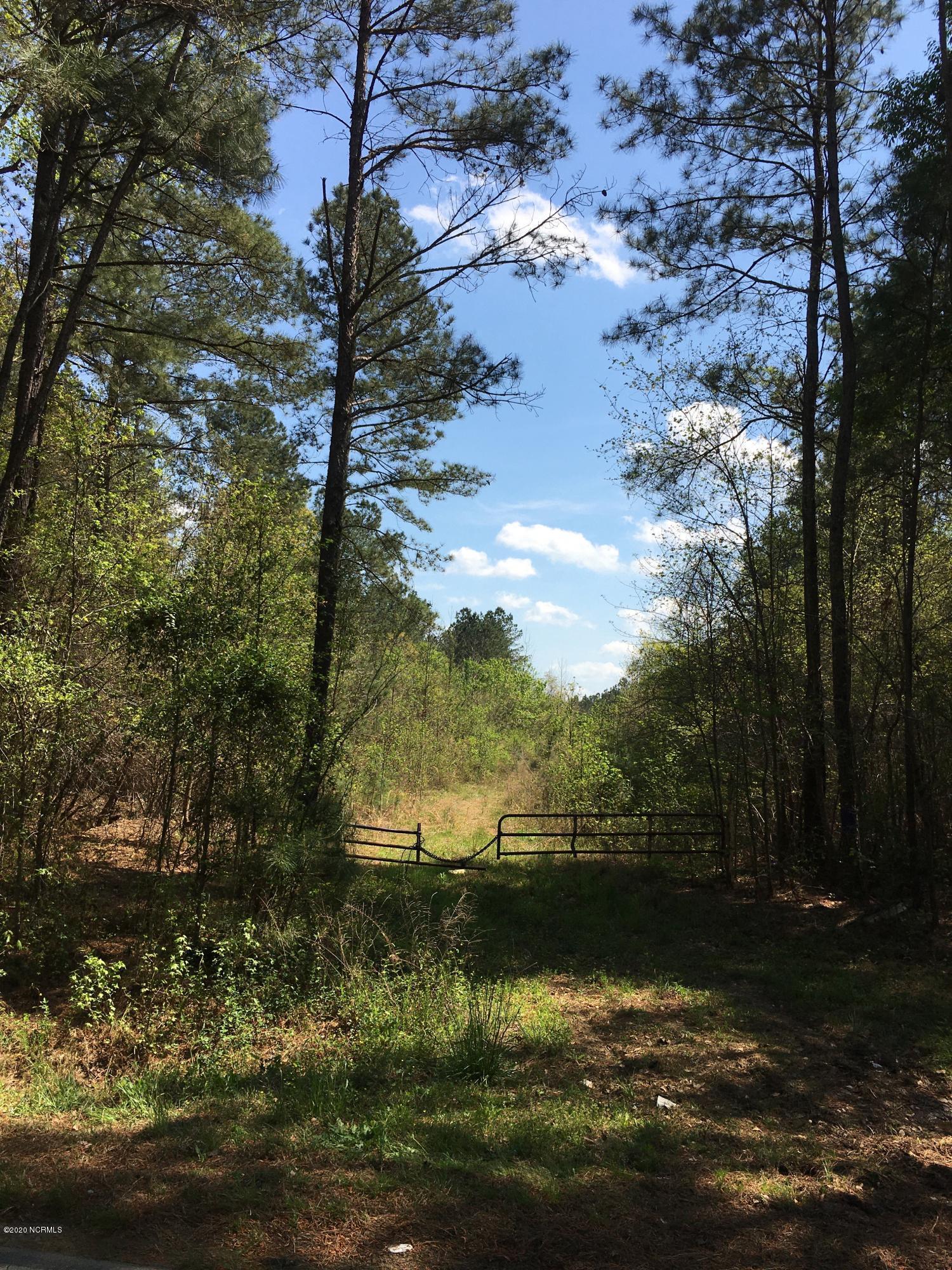0101 Cannan Road, Newton Grove, North Carolina 28366, ,Timberland,For sale,Cannan,100224488