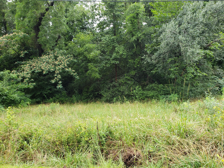 566 Bitmore Road, Whiteville, North Carolina 28472, ,Residential land,For sale,Bitmore,100224567
