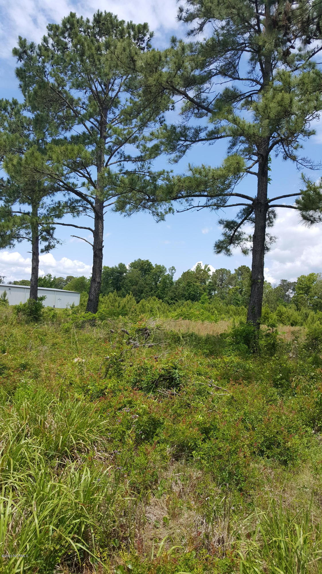 966 Highway 24, Newport, North Carolina 28570, ,Commercial/industrial,For sale,Highway 24,100217373