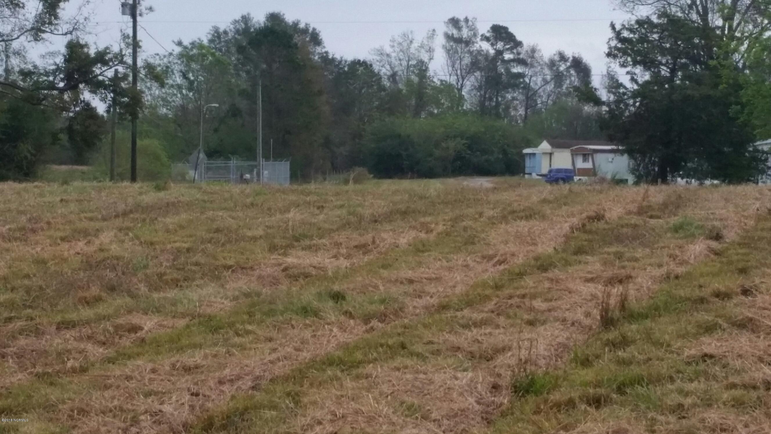 4070 Nc 11 Highway, Wallace, North Carolina 28466, ,Undeveloped,For sale,Nc 11,100224811