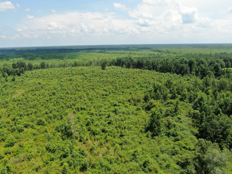 Tbd Creek Road, Orrum, North Carolina 28369, ,Farm,For sale,Creek,100225144