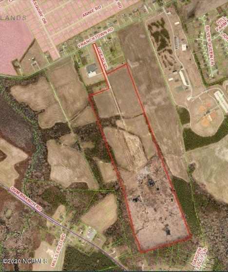 000 Francktown Road, Richlands, North Carolina 28574, ,Undeveloped,For sale,Francktown,100225350