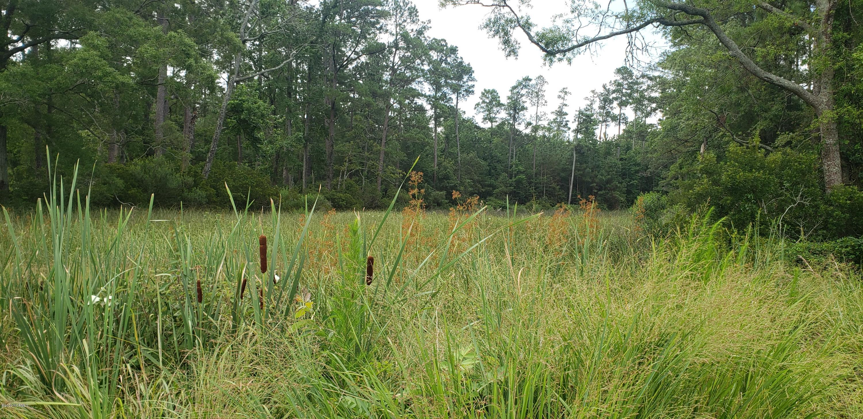 1731 State Road, Belhaven, North Carolina 27810, ,Residential land,For sale,State,100196968