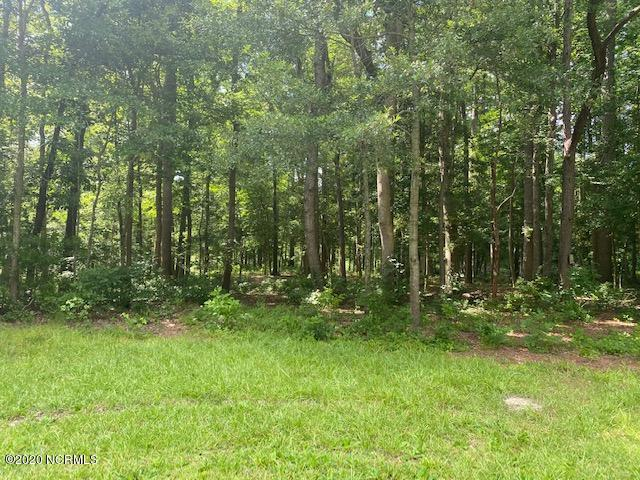 Lot 3 State Rd 1111 Off, Blounts Creek, North Carolina 27814, ,Wooded,For sale,State Rd 1111 Off,100226381