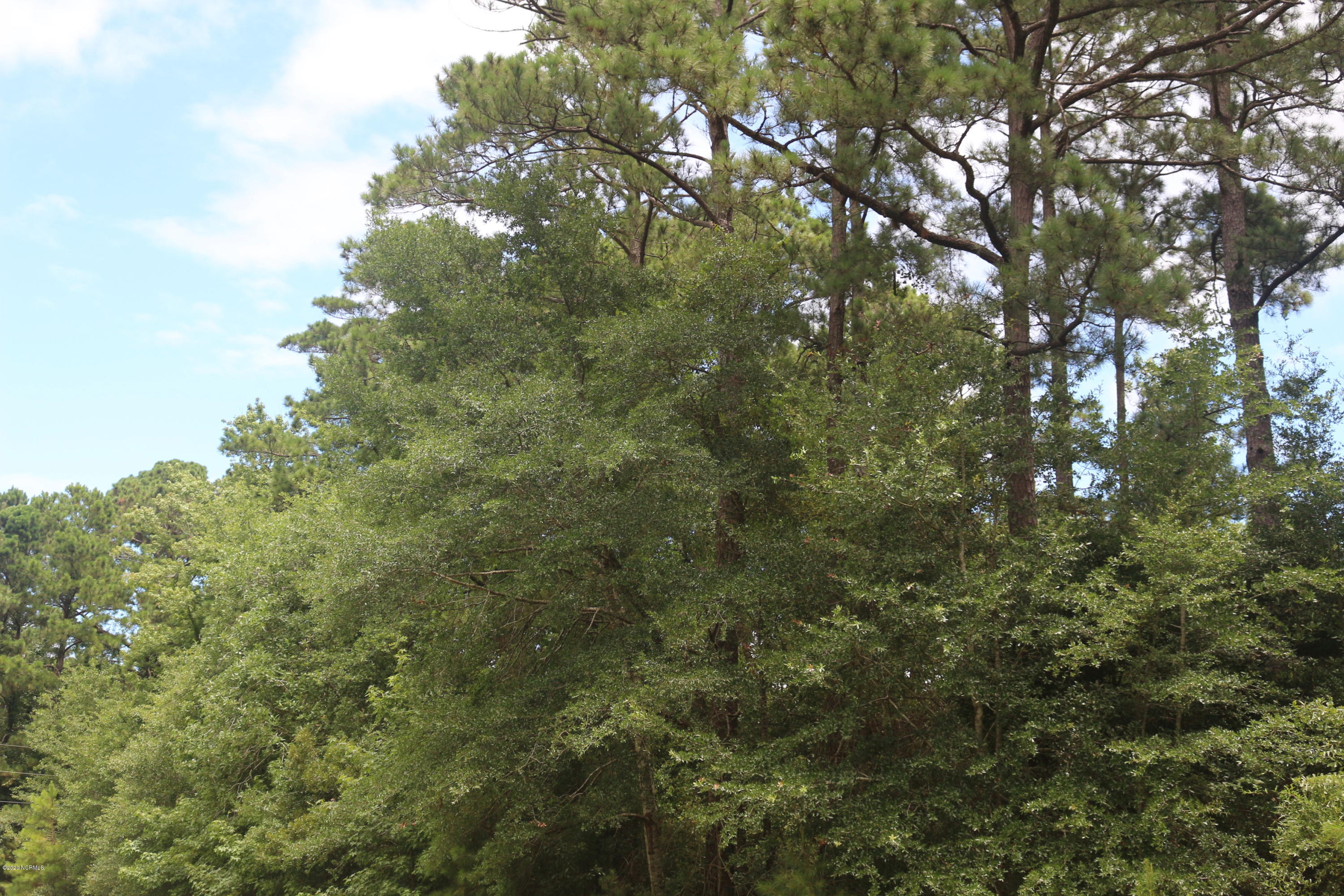 2520 Lightwood Drive, Supply, North Carolina 28462, ,Residential land,For sale,Lightwood,100226283