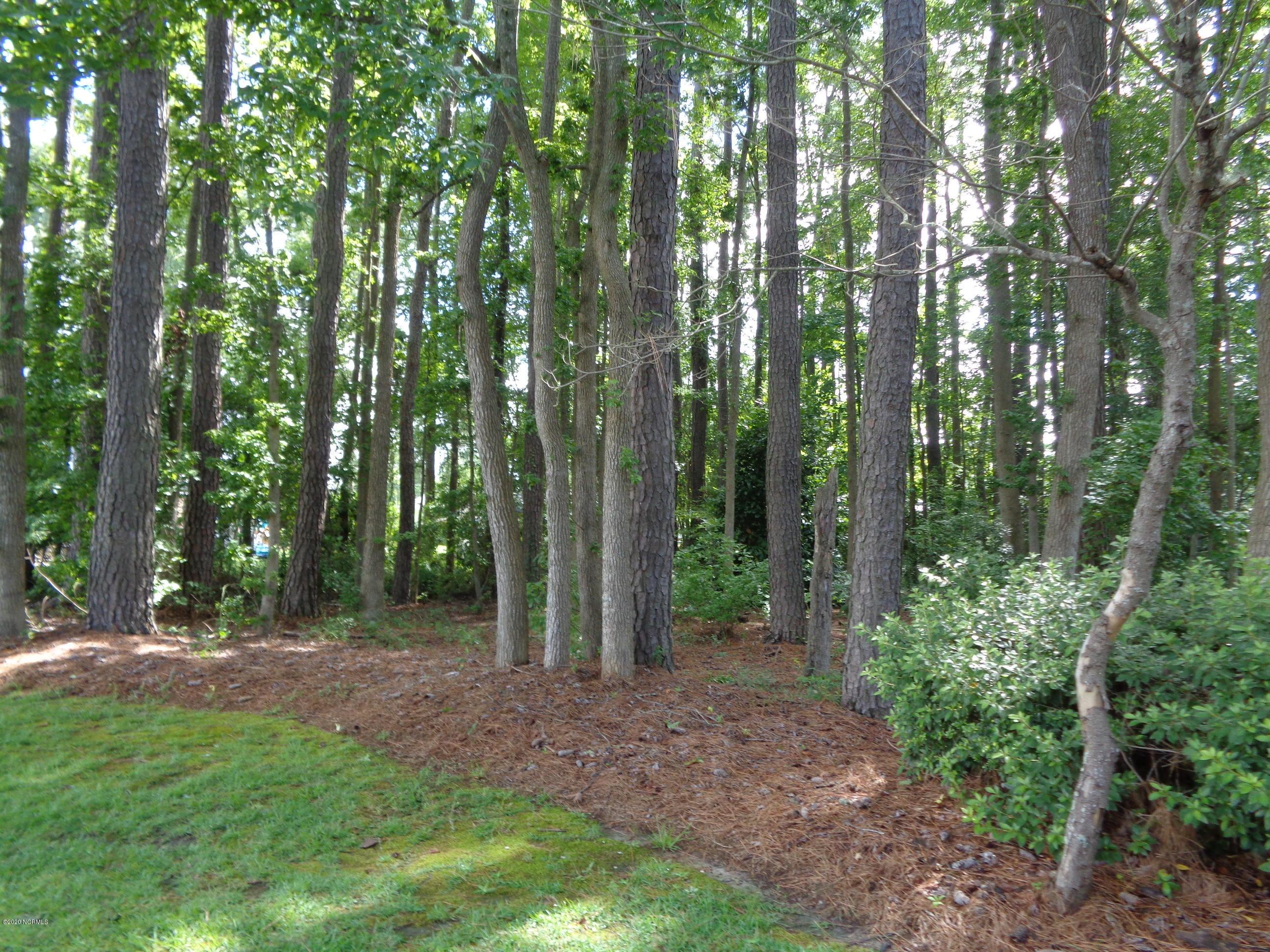 1110 Pamela Drive, Kinston, North Carolina 28504, ,Residential land,For sale,Pamela,100226401