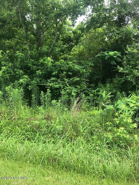 4076 Hollowell Road, Robersonville, North Carolina 27871, ,Wooded,For sale,Hollowell,100226536