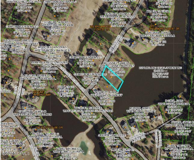 259 Sycamore Forest Drive, Wallace, North Carolina 28466, ,Residential land,For sale,Sycamore Forest,100226608