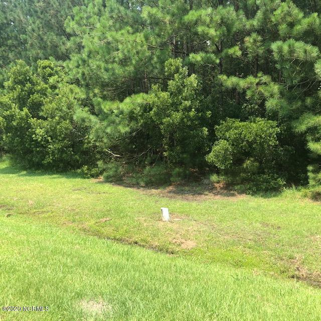94 Dowry Creek, Belhaven, North Carolina 27810, ,Wooded,For sale,Dowry,100226659