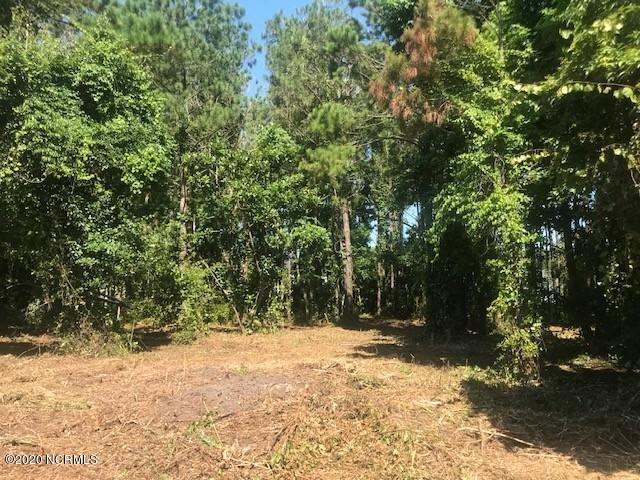 Lots 10-11 Driftwood Lane, Hampstead, North Carolina 28443, ,Residential land,For sale,Driftwood,100226840