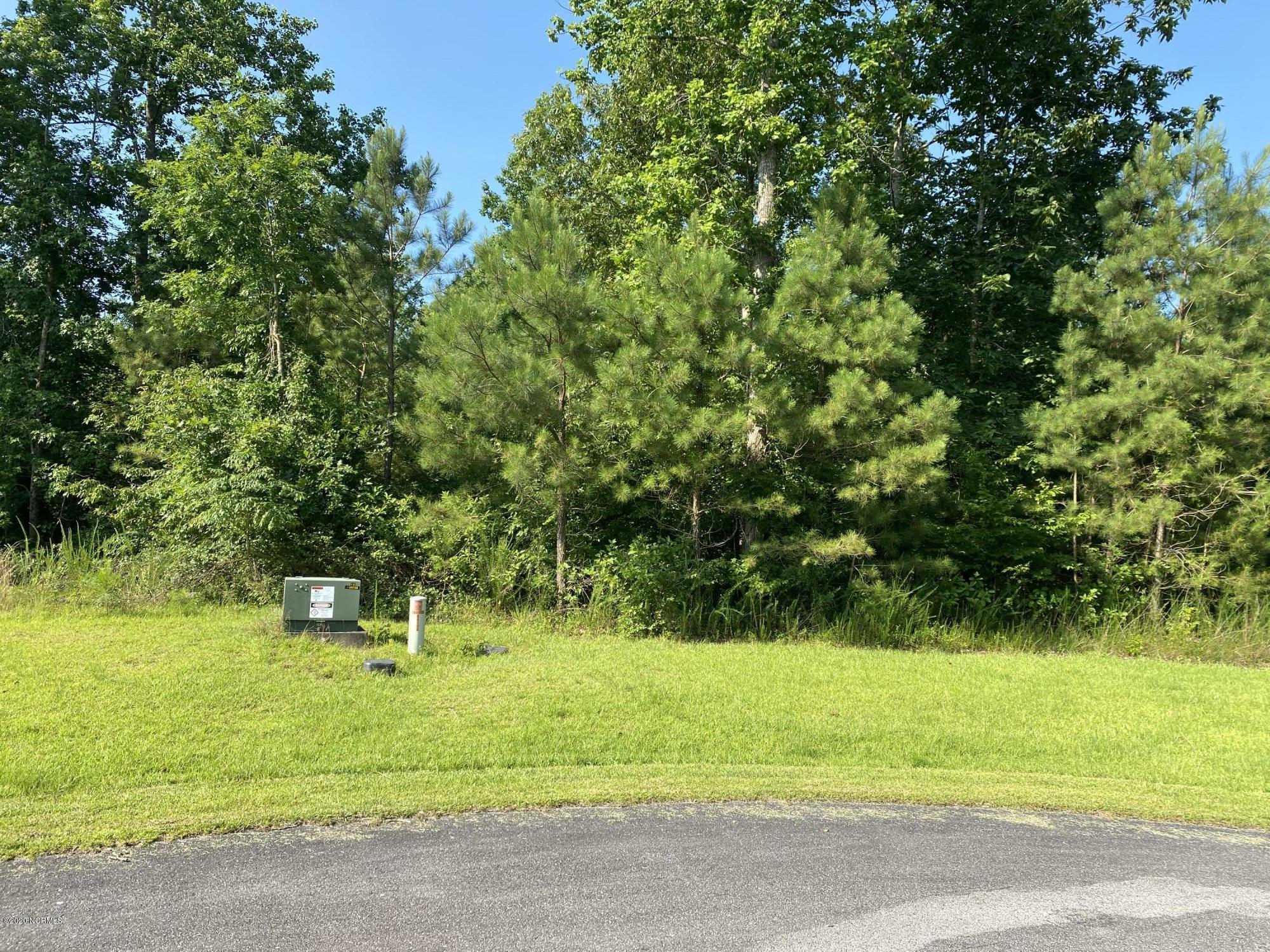 129 & 125 West Ag, New Bern, North Carolina 28560, ,Wooded,For sale,West Ag,100226846