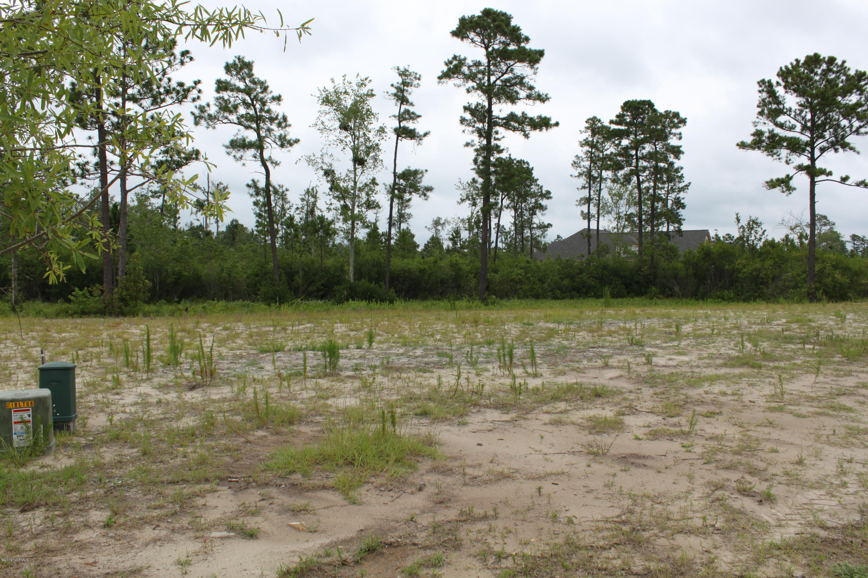 8411 Oak Abbey Trail, Leland, North Carolina 28451, ,Residential land,For sale,Oak Abbey,100226869