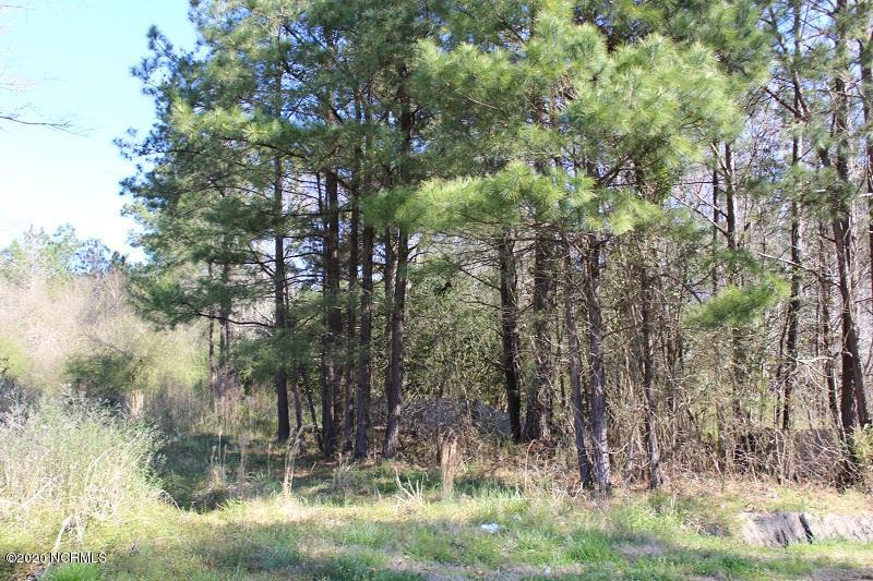 0 Red Hawk Lane, Rocky Point, North Carolina 28457, ,Residential land,For sale,Red Hawk,100226326
