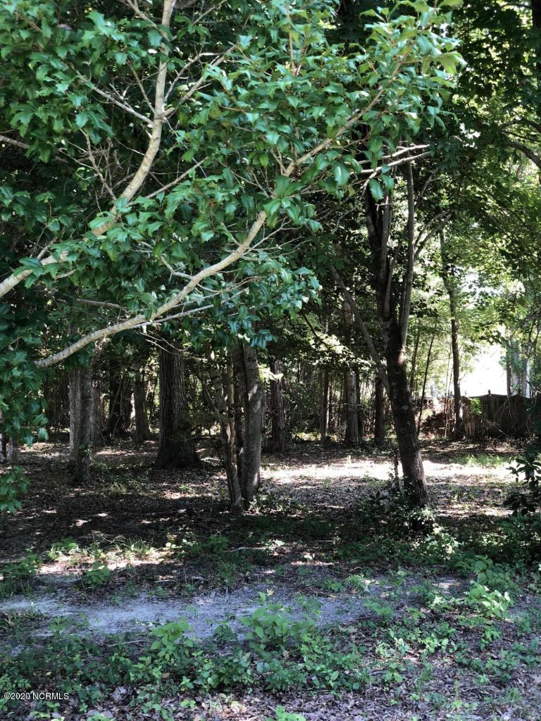 332 Osprey Point Drive, Sneads Ferry, North Carolina 28460, ,Residential land,For sale,Osprey Point,100227353