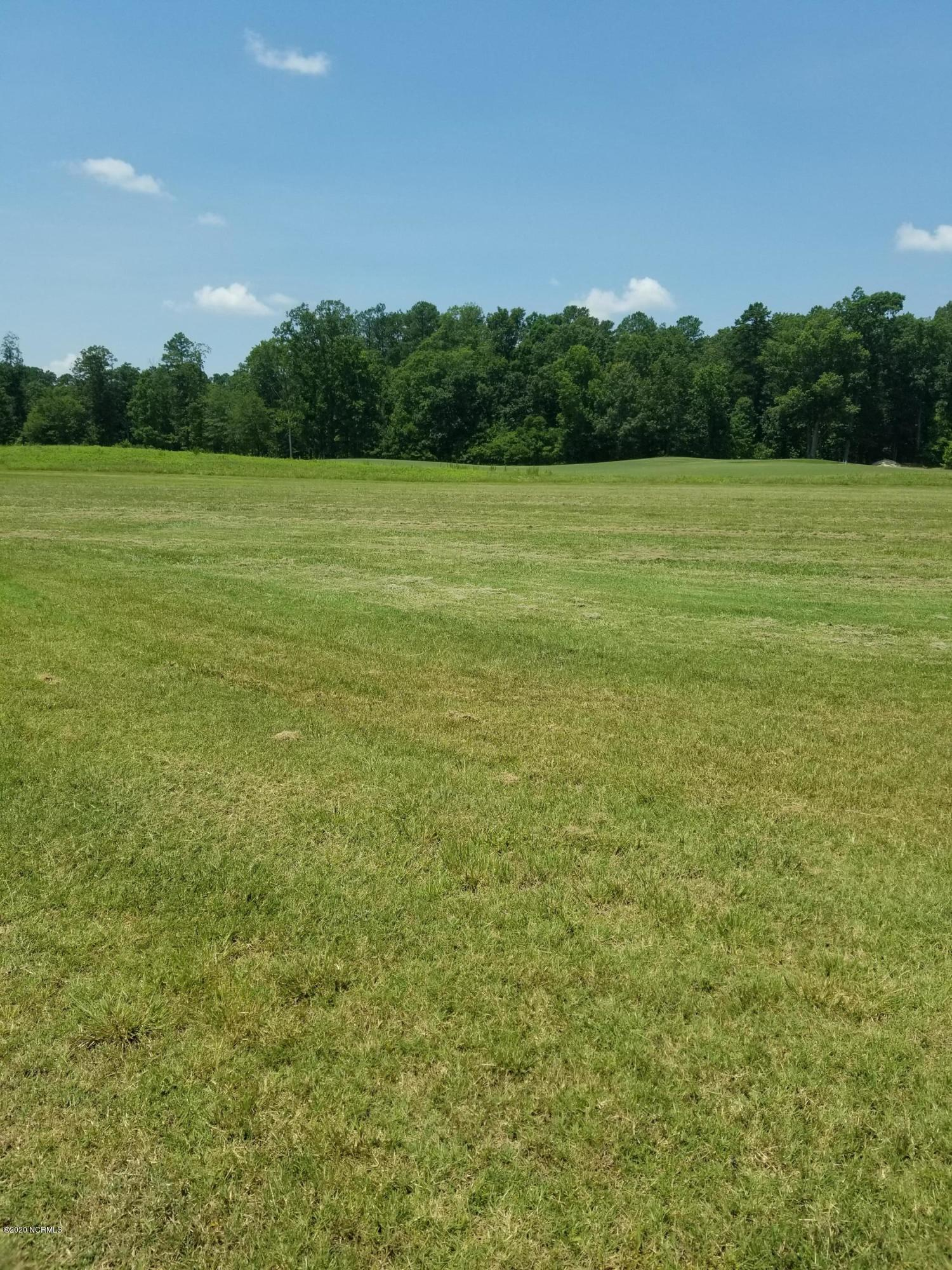 294 Tayriver, Rocky Mount, North Carolina 27804, ,Residential land,For sale,Tayriver,100227039