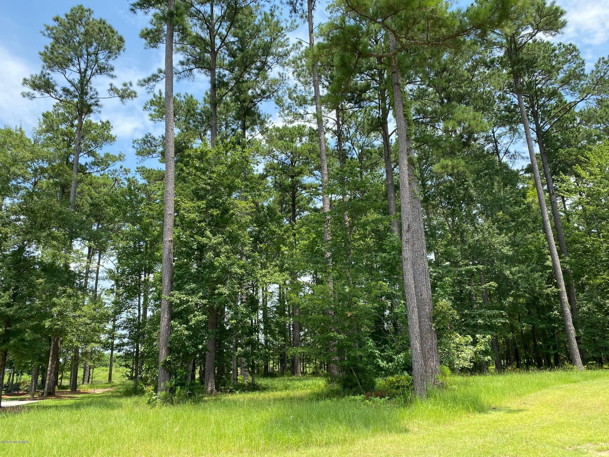 4316 Periwinkle Place, New Bern, North Carolina 28562, ,Residential land,For sale,Periwinkle,100227848