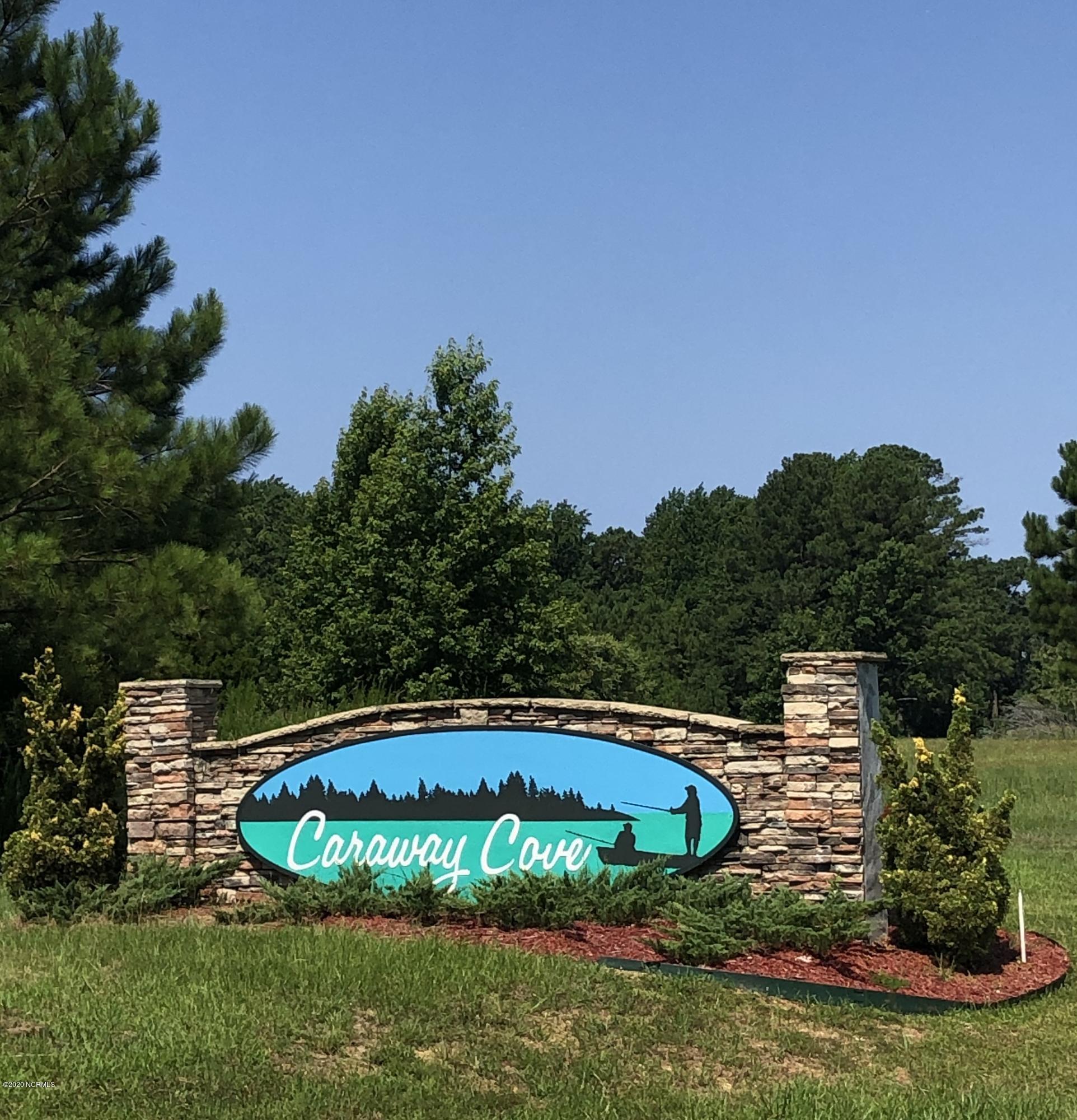 735 Log Cabin Road, Arapahoe, North Carolina 28510, ,Residential land,For sale,Log Cabin,100228928