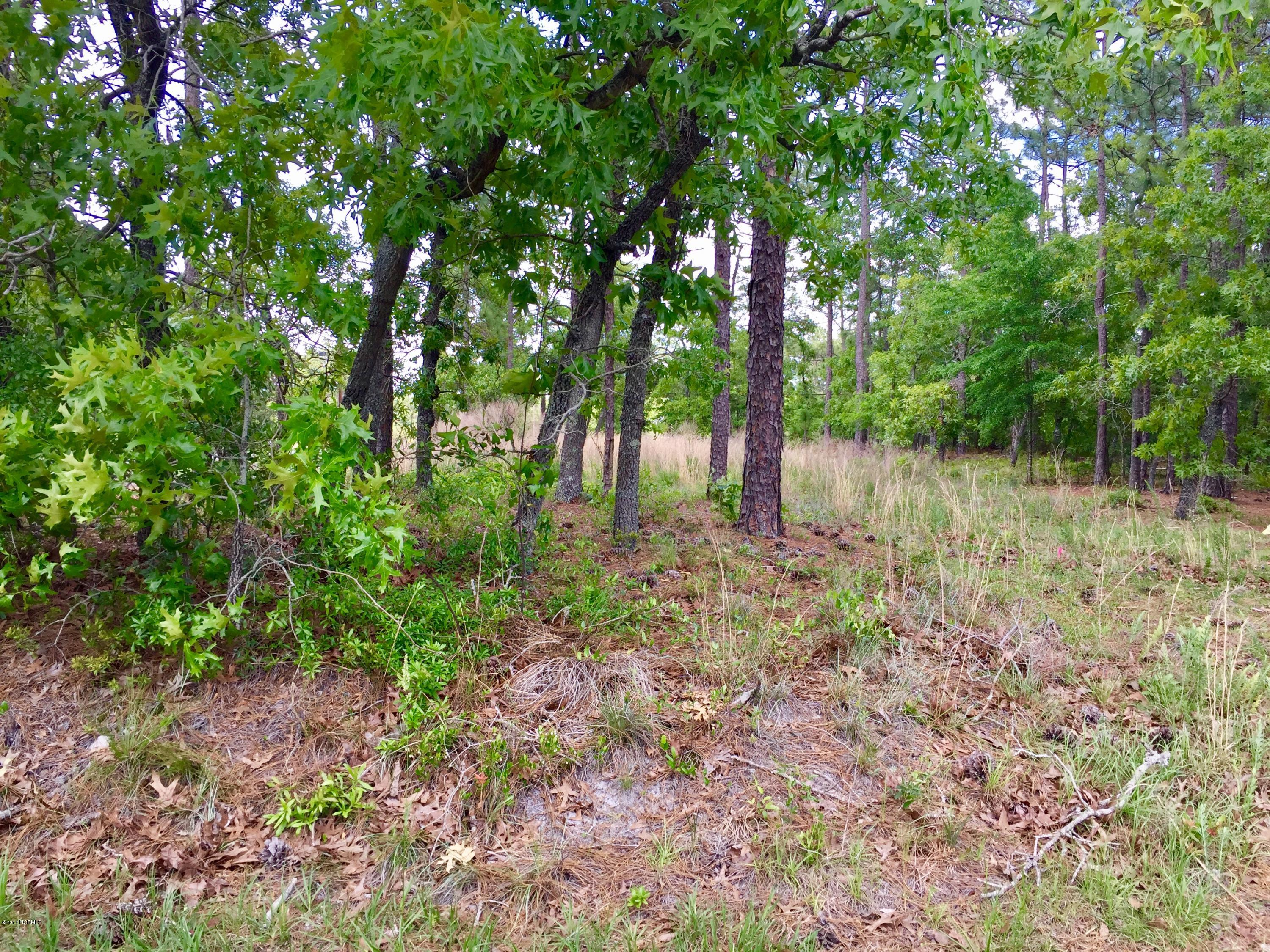 11 Pine Shore Drive, Boiling Spring Lakes, North Carolina 28461, ,Residential land,For sale,Pine Shore,100228998