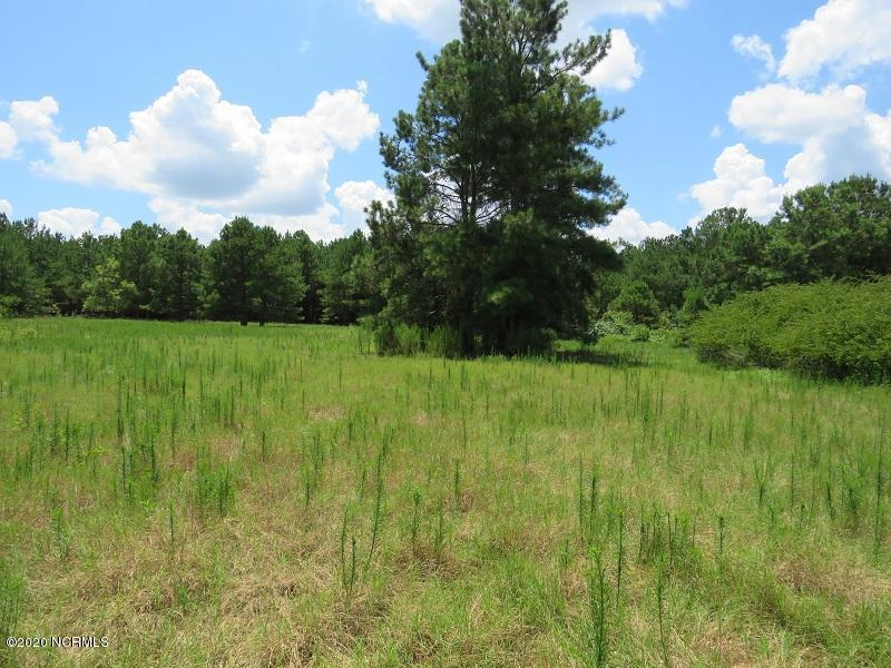 9671 Hardwick Road, Nichols, South Carolina 29581, ,Recreation,For sale,Hardwick,100229063