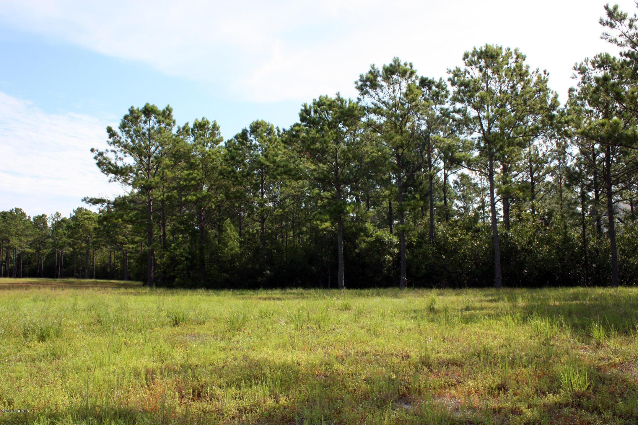 6344 Blenhiem Place, Ocean Isle Beach, North Carolina 28469, ,Residential land,For sale,Blenhiem,100229302