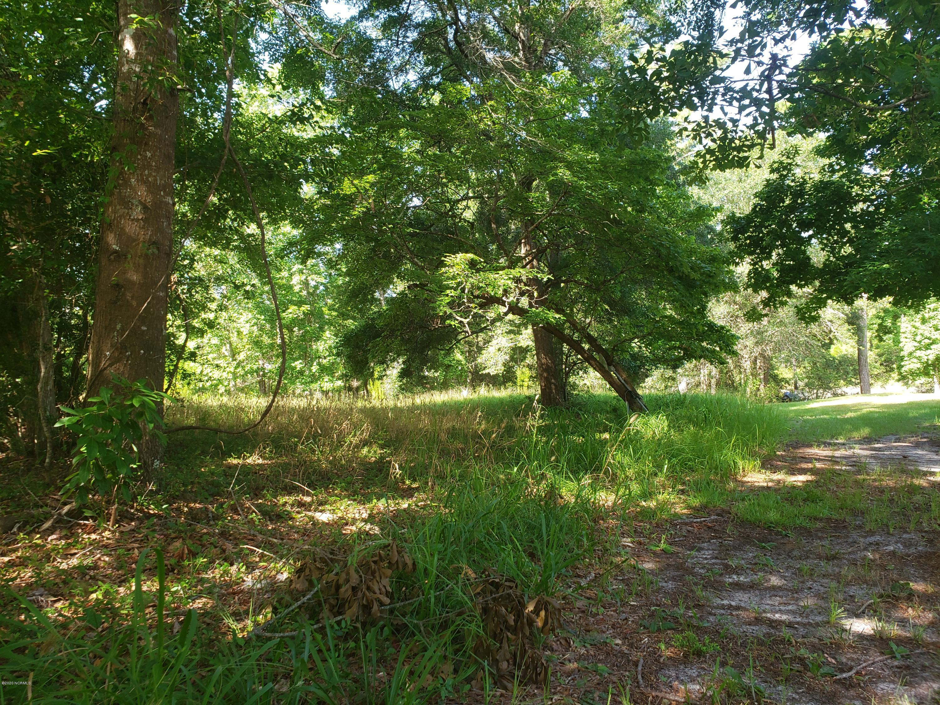 1613 Salmon Lane, Ocean Isle Beach, North Carolina 28469, ,Residential land,For sale,Salmon,100229802