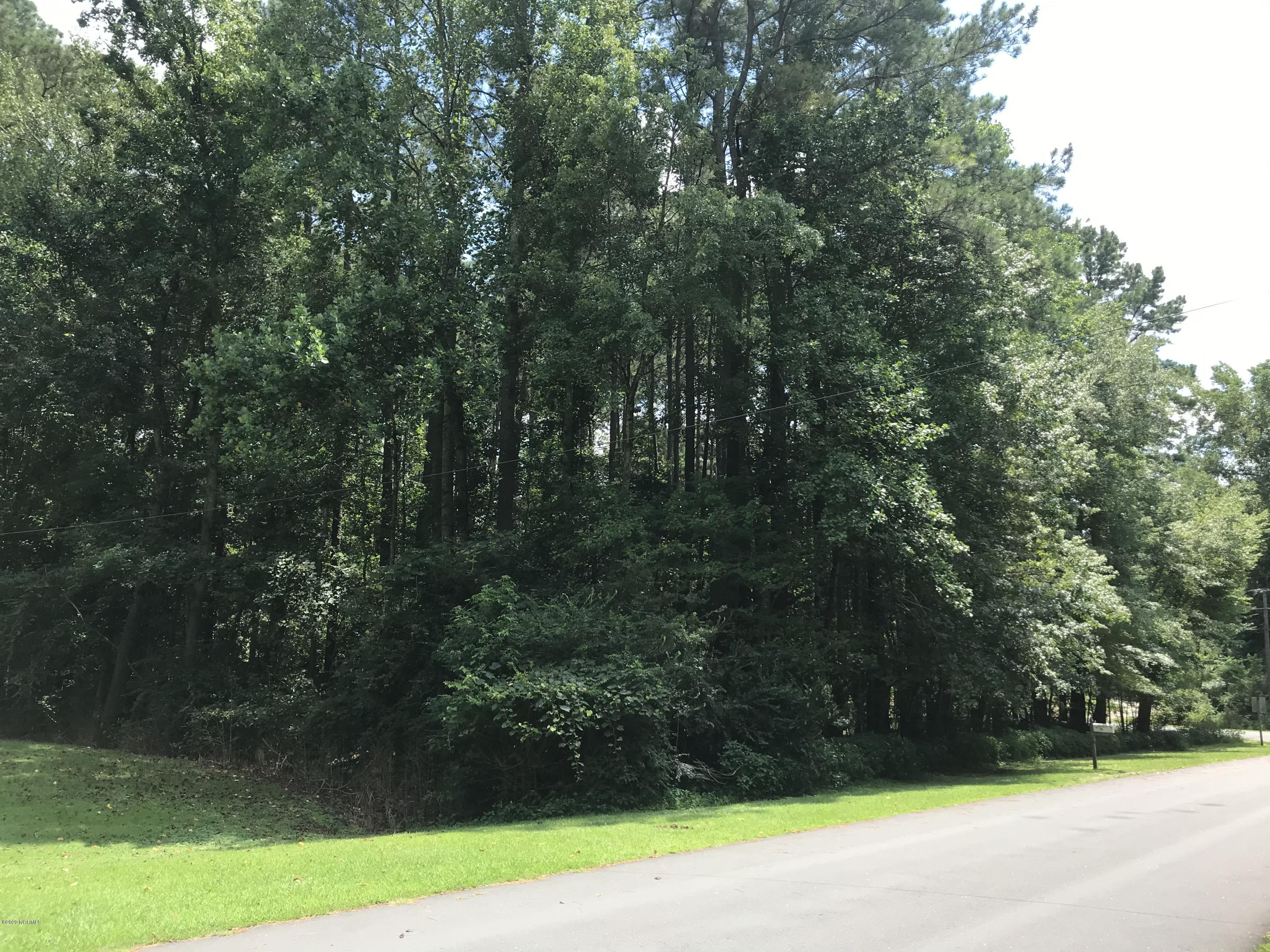 Lot #86 Canal And Ridge Street, Williamston, North Carolina 27892, ,Wooded,For sale,Canal And Ridge,100230366