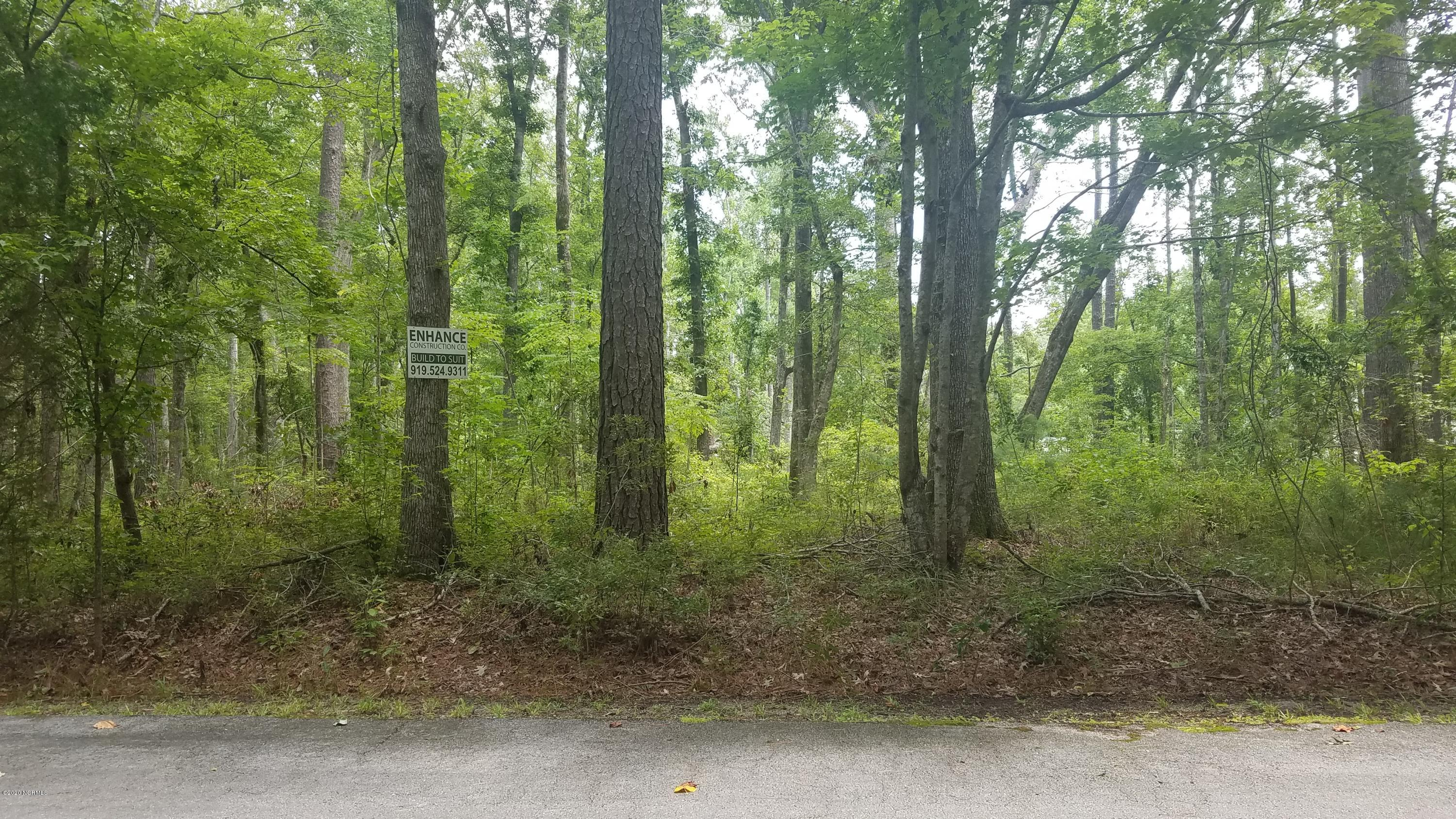 6702 Hummingbird Point, Oriental, North Carolina 28571, ,Residential land,For sale,Hummingbird,100231061