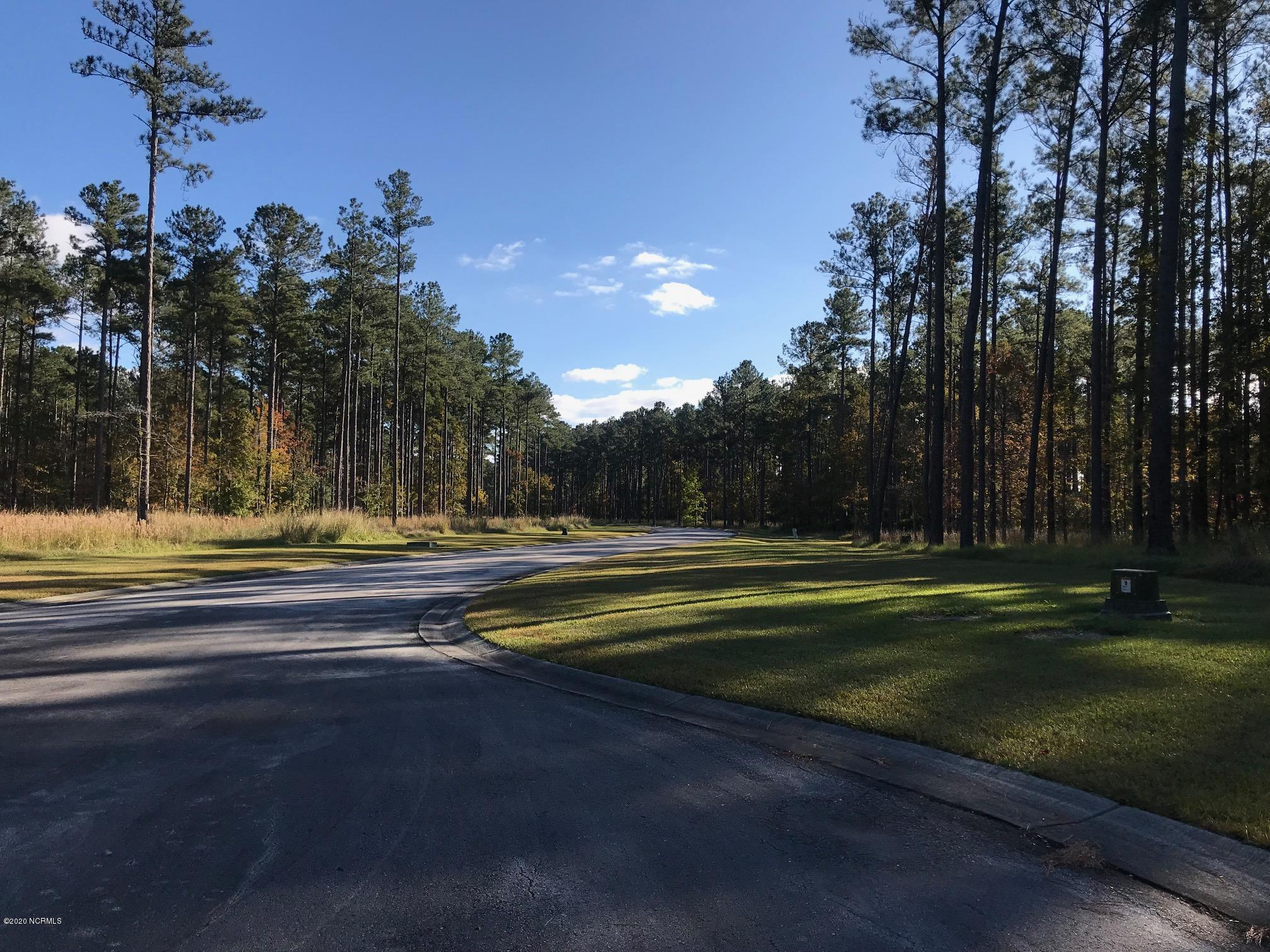 278 Dawson Creek Boulevard, Arapahoe, North Carolina 28510, ,Residential land,For sale,Dawson Creek,100230947