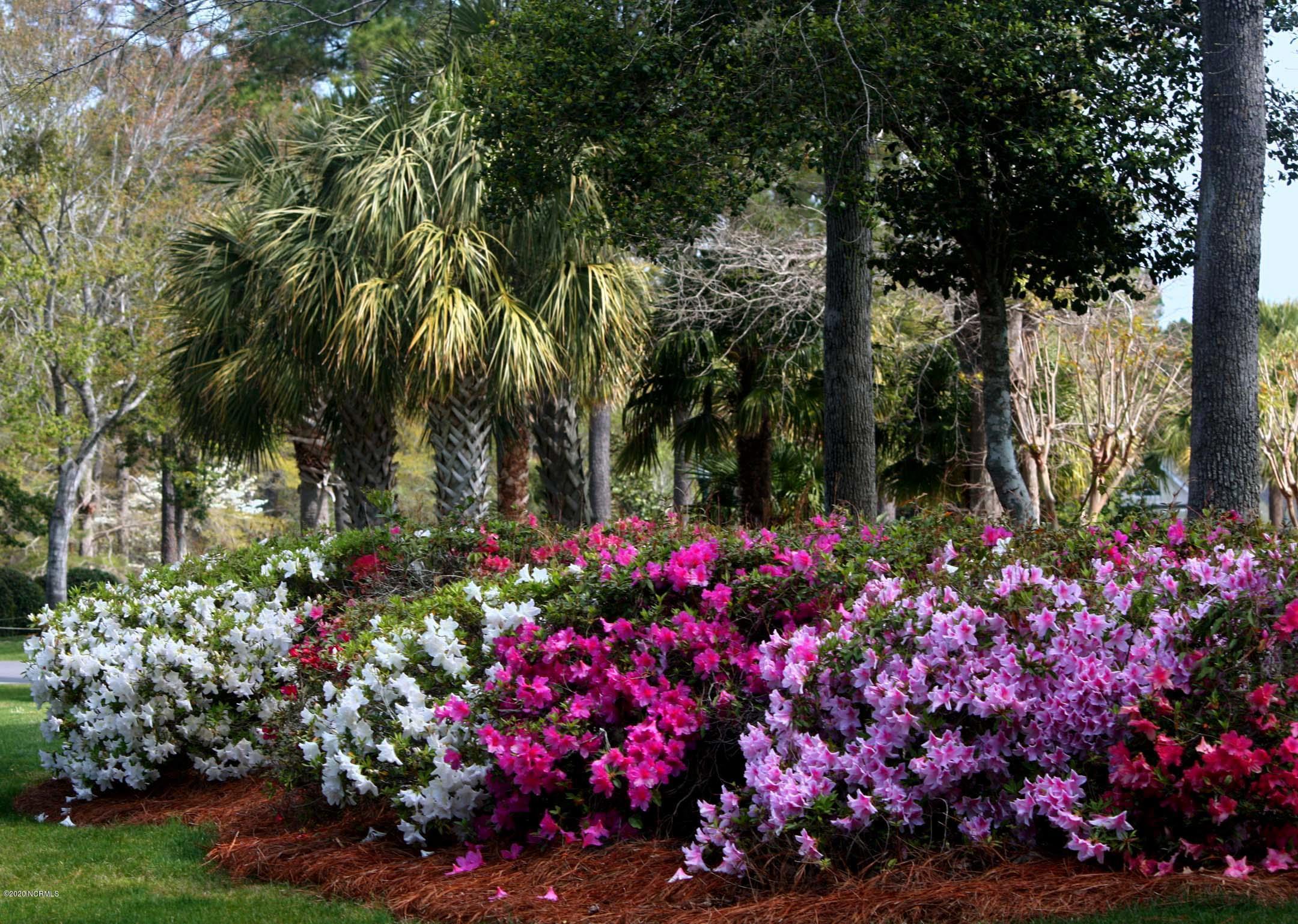 56 Abbington Place, Ocean Isle Beach, North Carolina 28469, ,Residential land,For sale,Abbington,100231010