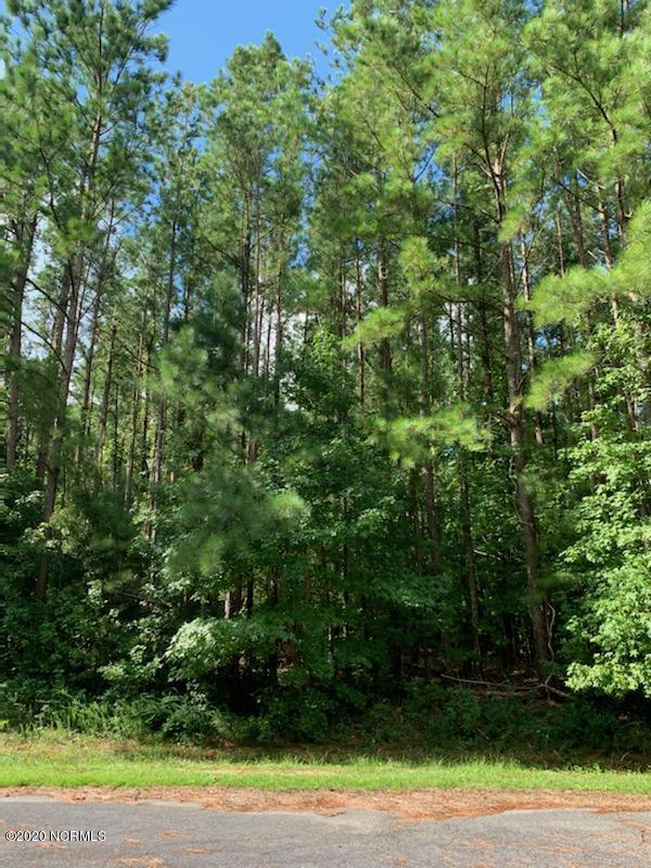 125r Nightingale Court, Rocky Point, North Carolina 28457, ,Residential land,For sale,Nightingale,100231214
