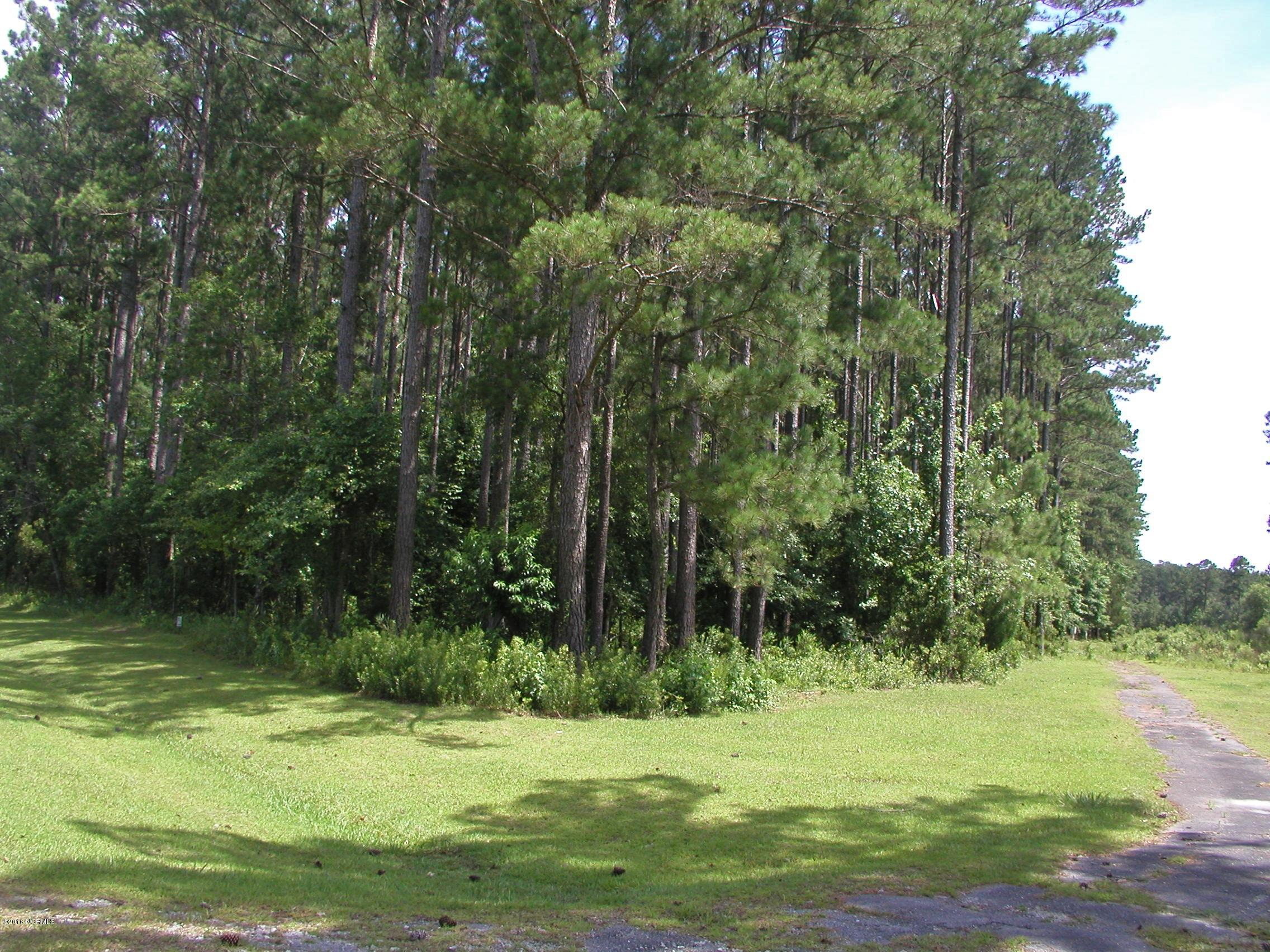 131 Antebellum Drive, Havelock, North Carolina 28532, ,Residential land,For sale,Antebellum,100231440
