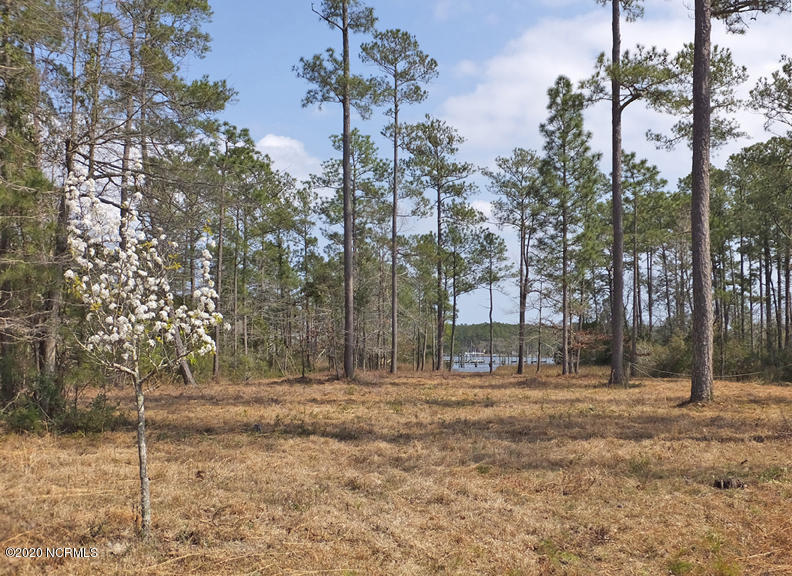 164 Shore Drive, Oriental, North Carolina 28571, ,Residential land,For sale,Shore,100231655