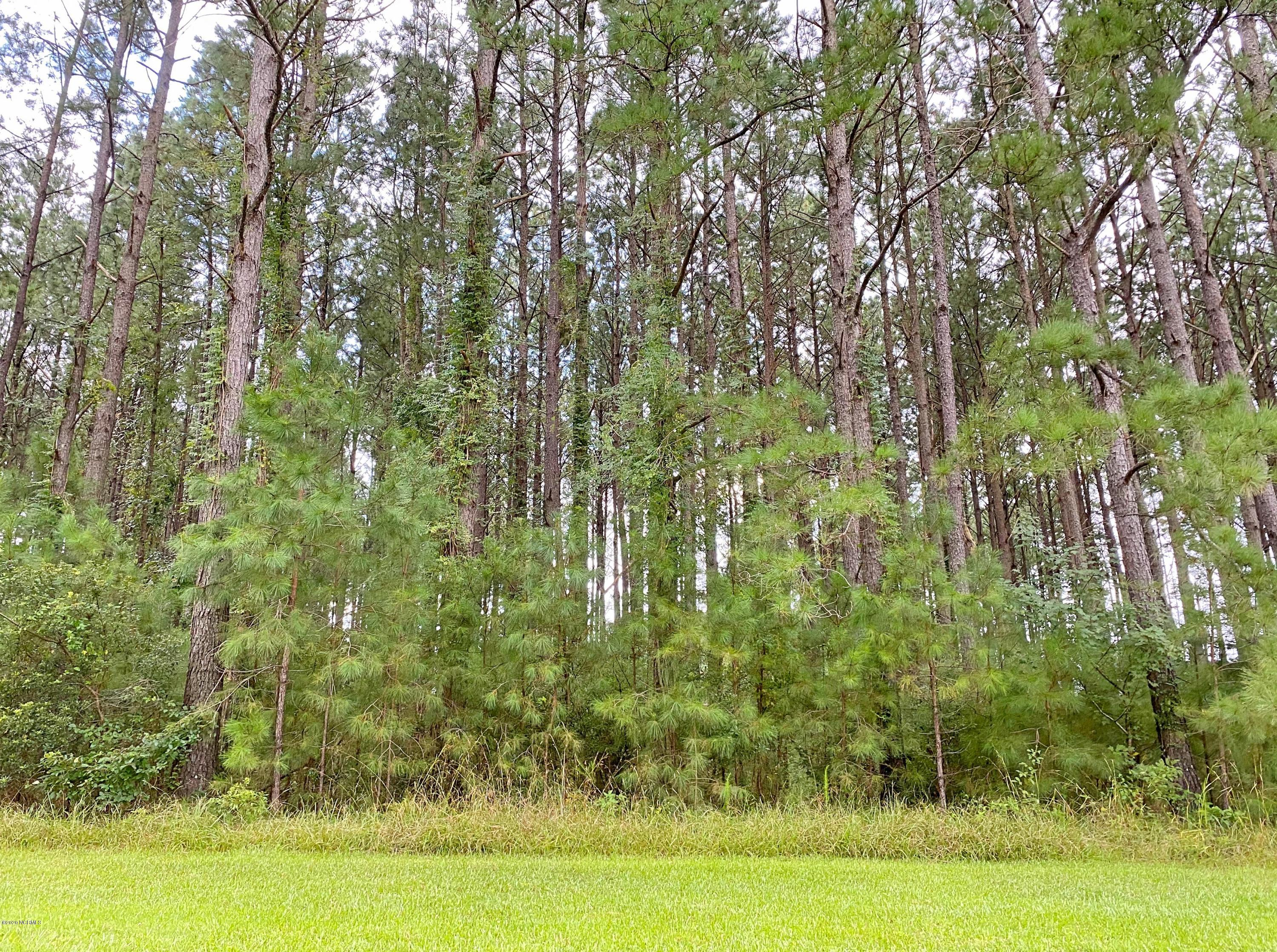 389 Crow Creek Drive, Calabash, North Carolina 28467, ,Residential land,For sale,Crow Creek,100231899