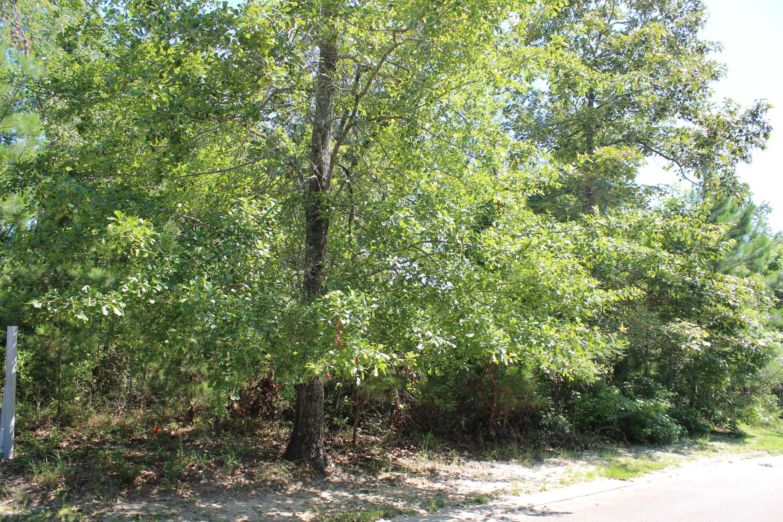 3076 Brackenbury Street, Shallotte, North Carolina 28470, ,Residential land,For sale,Brackenbury,100232159