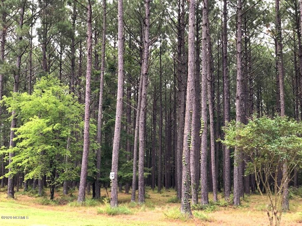 357 Madison Avenue, Oriental, North Carolina 28571, ,Residential land,For sale,Madison,100231486