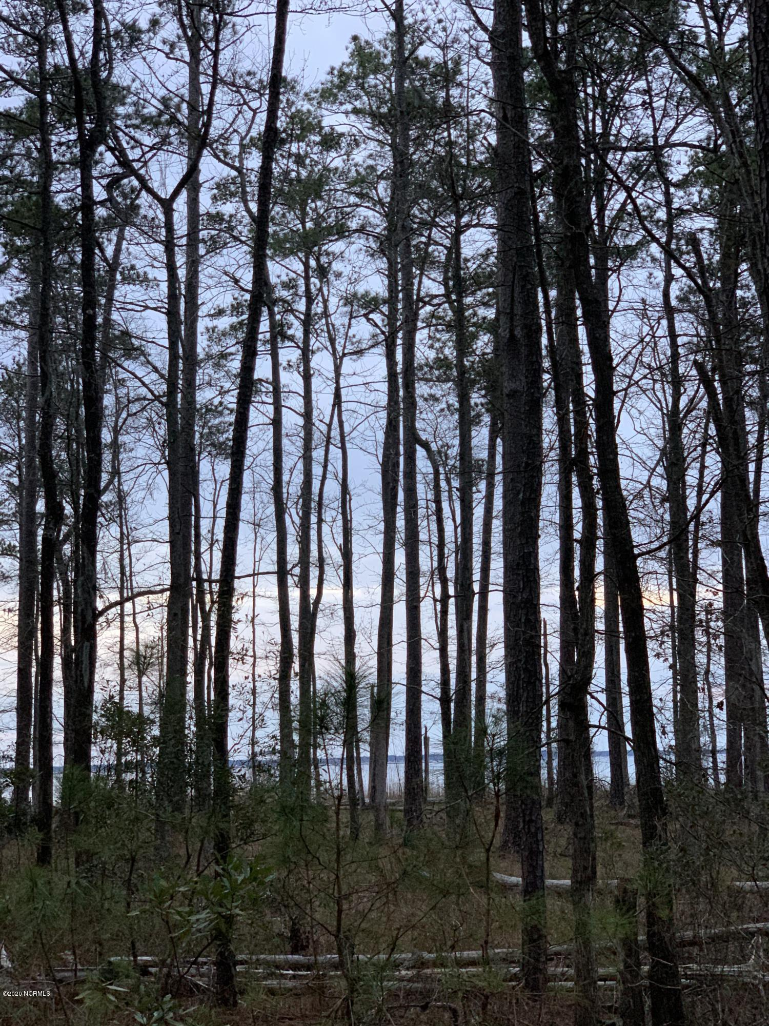 Lot # 6 State Rd 1902 Off Drive, Aurora, North Carolina 27806, ,Residential land,For sale,State Rd 1902 Off,100233371