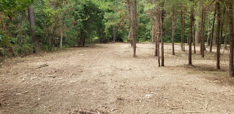 847 Hardison Lee Farm Road, Arapahoe, North Carolina 28510, ,Residential land,For sale,Hardison Lee Farm,100229288