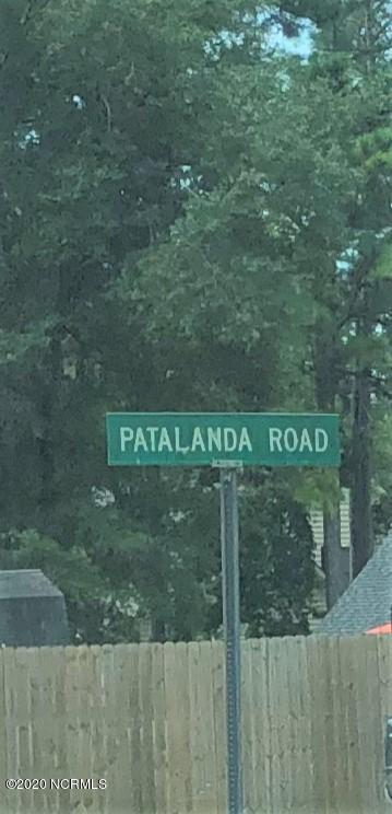 311 Patalanda Road, Wilmington, North Carolina 28409, ,Residential land,For sale,Patalanda,100234095