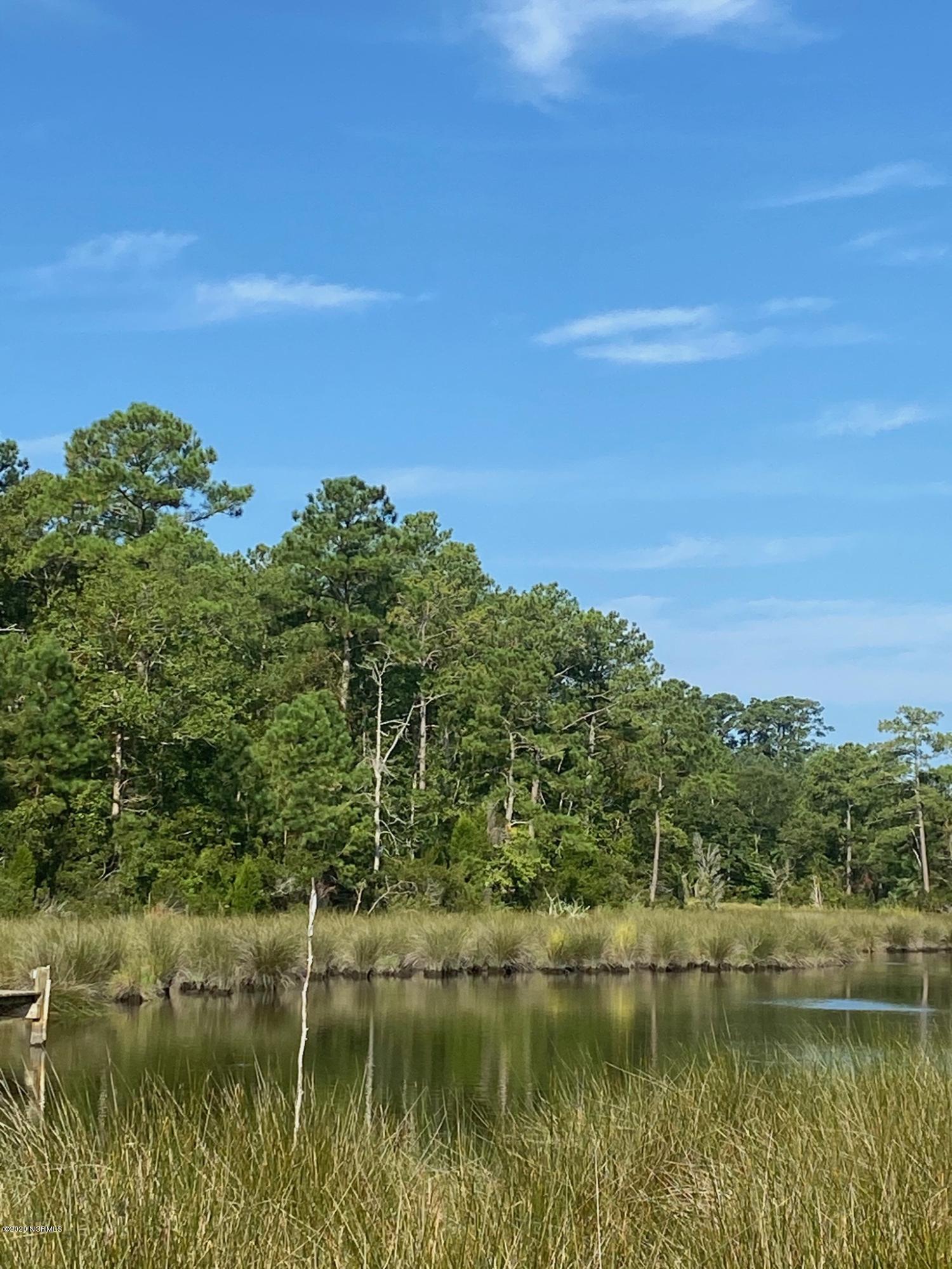 28 Pinecrest Road, Bath, North Carolina 27808, ,Residential land,For sale,Pinecrest,100234573
