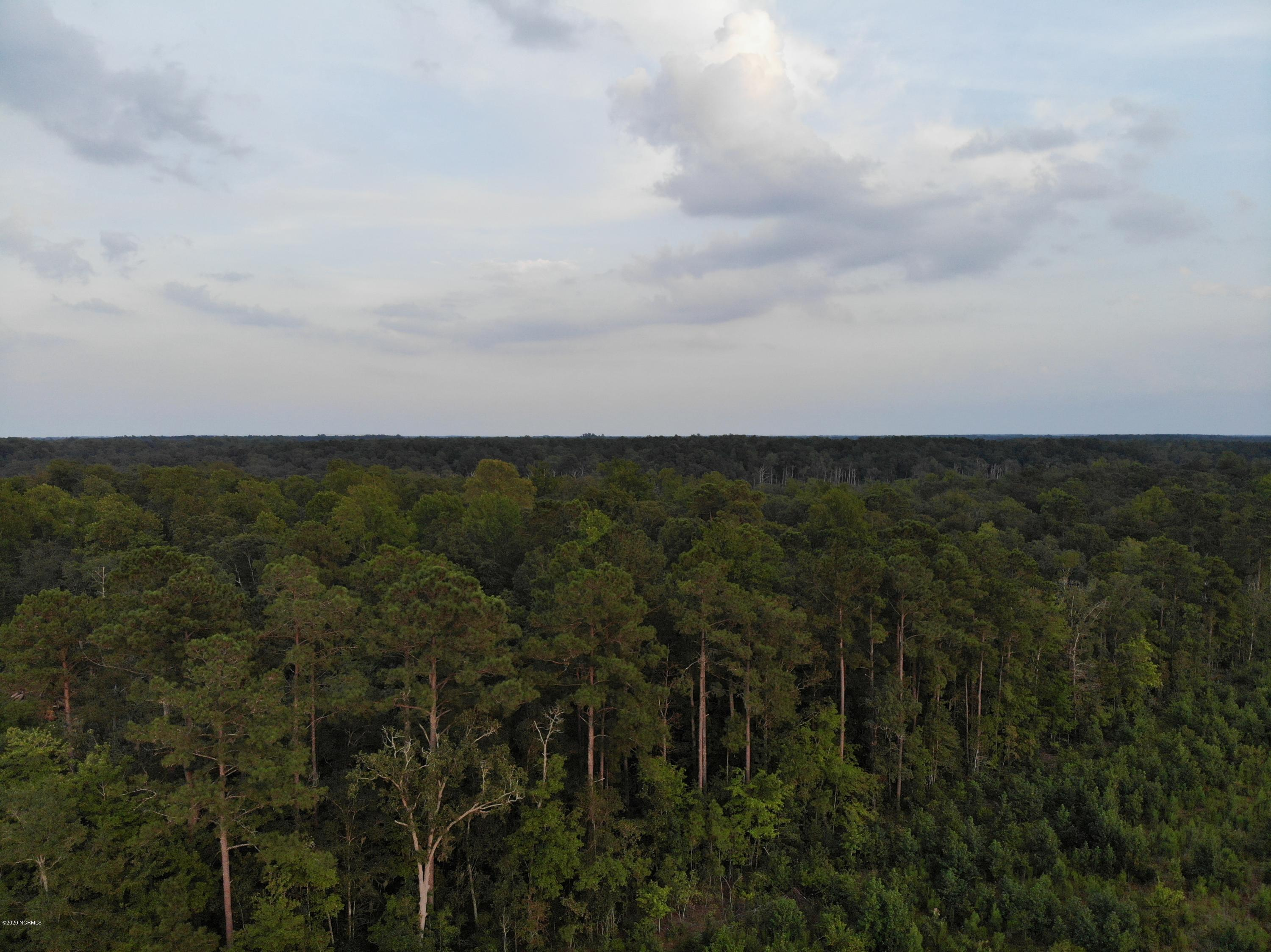 Tr-A State Rd 1103, Blounts Creek, North Carolina 27814, ,Timberland,For sale,State Rd 1103,100210906